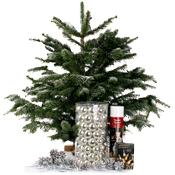 Nordmann mini kerstboom Zilver
