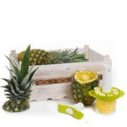 Fruitkist Ananas met slicer